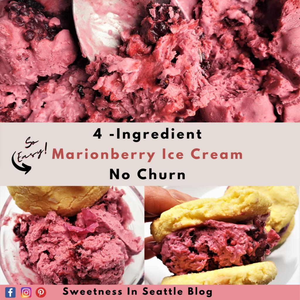 4-Ingredient No Churn Marionberry Ice Cream